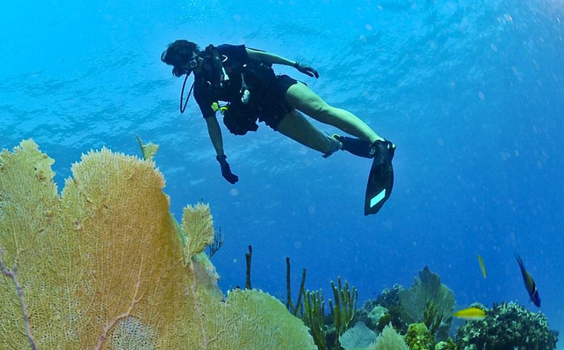 Bautismo de buceo en Isla de Olla